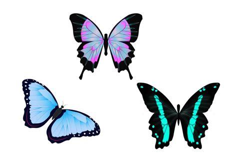Ilustración gratis: Mariposas, Ilustración, Dibujo ...