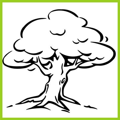 Image Gallery dibujo arbol