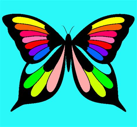 Image Gallery imagenes de mariposas coloridas
