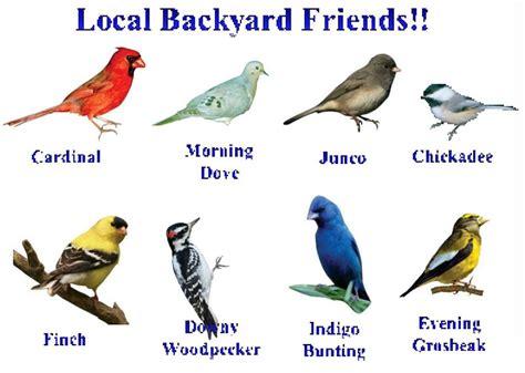 Image Gallery names of winter birds