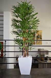 Image Gallery plantas artificiales