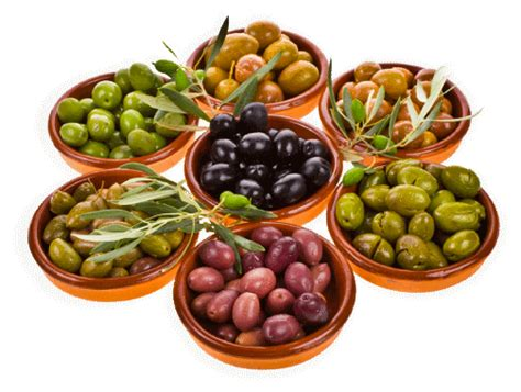 Image Gallery Spanish Olives