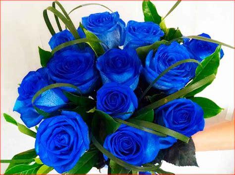 Imagen de rosas azules muy bellas, compártela