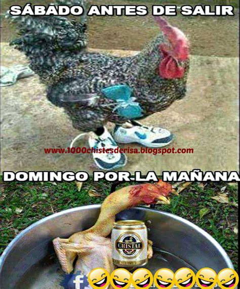 Imagenes chistosas para borrachos - Sabado y Domingo ...