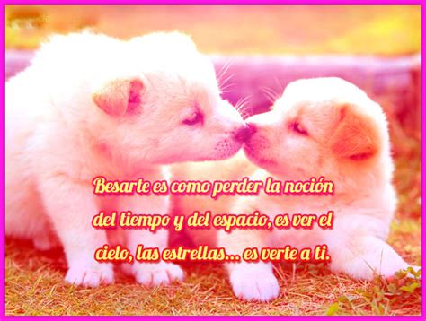Imagenes Con Frases De Amor Para Dedicar A Un Hombre ...