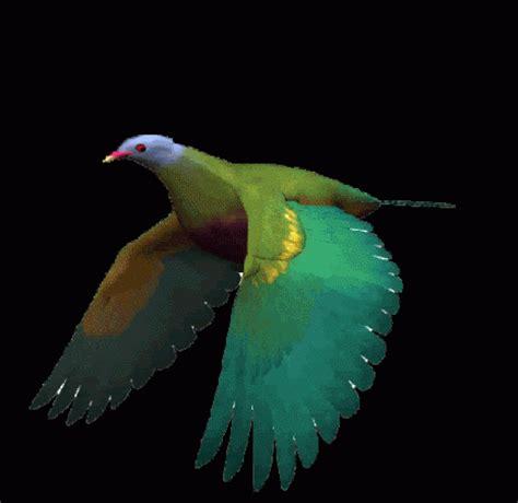 Imágenes con Gifs de pájaros  Pájaros volando  para ...