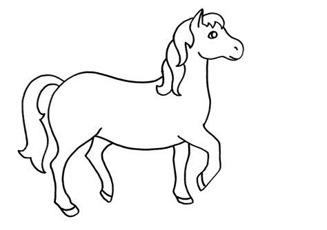 Imágenes de Animales para Dibujar