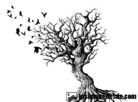 Imágenes de árbol de la vida   Imágenes