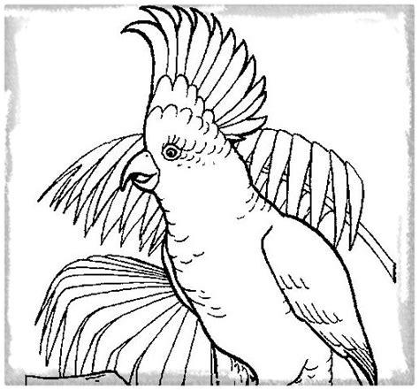 imagenes de aves volando para colorear Archivos   Imagenes ...