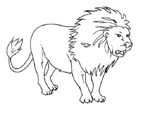 Imagenes de dibujos de animales reales par calcar - Imagui
