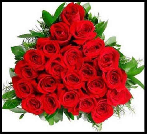 imagenes de flores exoticas   Imagen De Rosas Rojas
