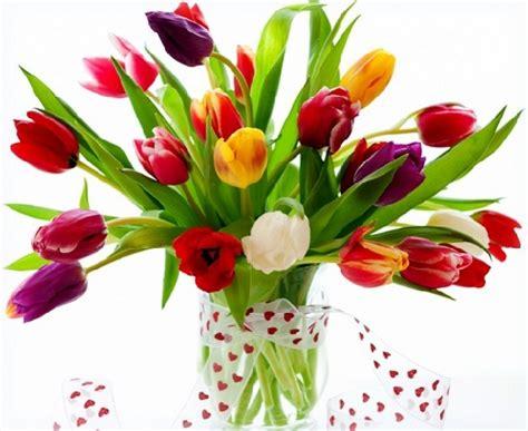 Imagenes De Flores Hermosas Para Regalar a Mi Amorcito ...
