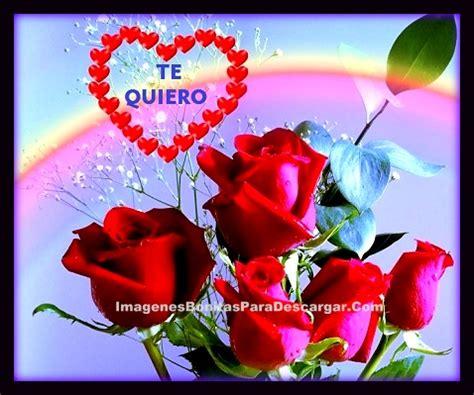 imagenes de flores mas hermosas para regalar a mi novia ...