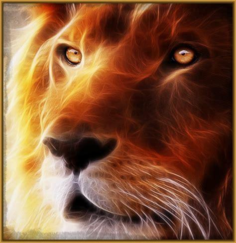 imágenes de leones para colorear Archivos   Imagenes de Leones