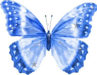 Imágenes de Mariposas: Grandes alas brillantes