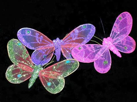 Imagenes de mariposas - Taringa!