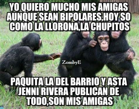 Imágenes de monos con frases chistosas, divertidas ...