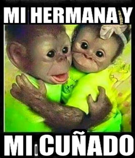 imágenes de monos con frases para hacer bromas, chistes ...