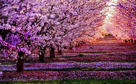 Imagenes de Paisajes Naturales Hermosos del Mundo