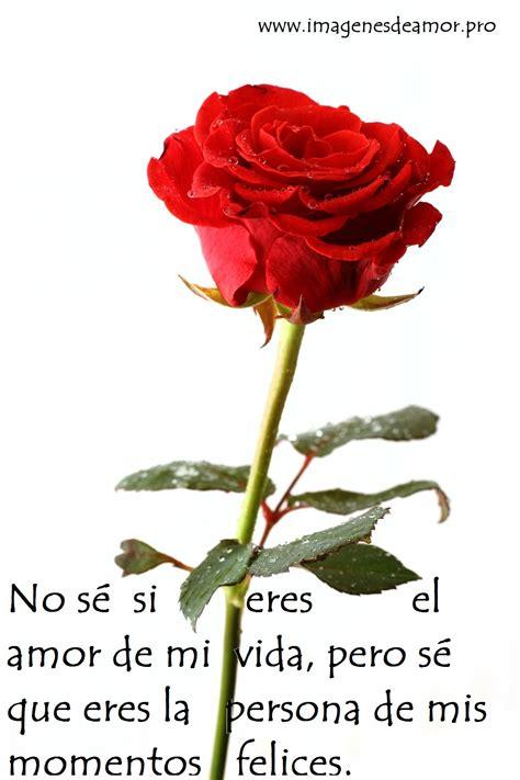 Imágenes de rosas con poemas cortos