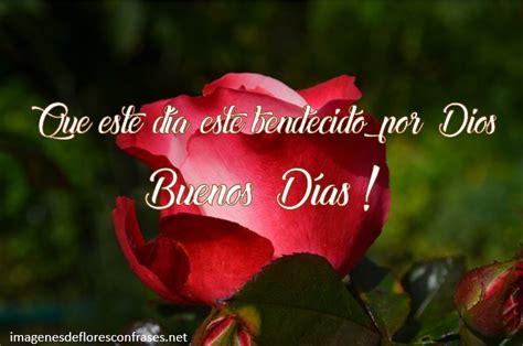 Imágenes De Rosas Para Desear Buenos Días, Rosas Con Frases