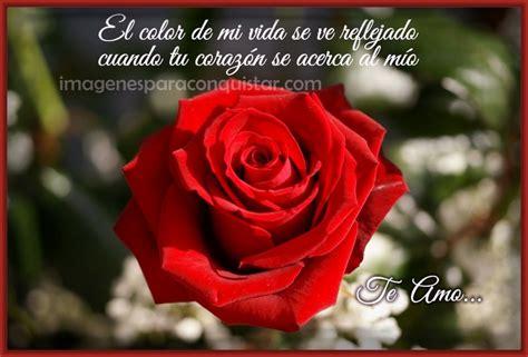 imagenes de rosas rojas hermosas con movimiento Archivos ...