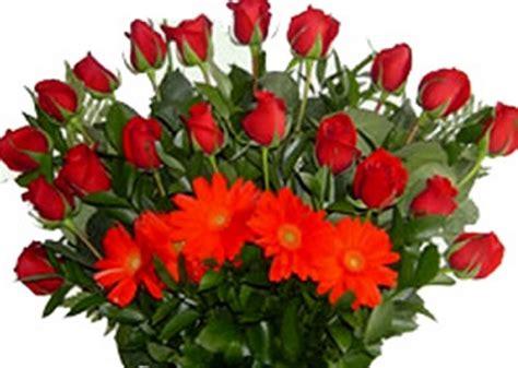 imagenes de rosas rojas hermosas con movimiento   Imagen ...