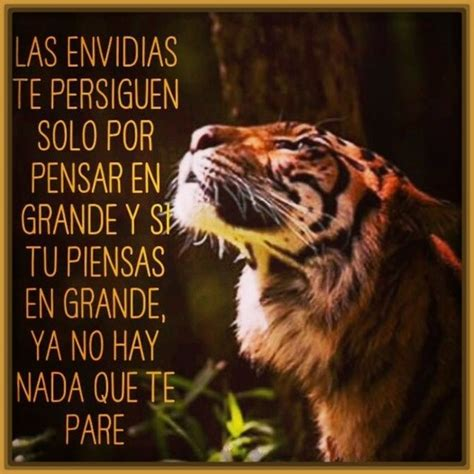 Imagenes de Tigres con Mensajes y Frases | Fotos de Tigres