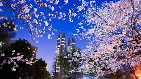 Imagenes De Tokio Ciudad Mega-Metrópolis