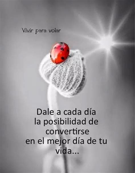 Imagenes Hermosas Con Frases Para Reflexionar Bonitas ...