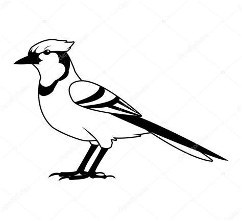 Imágenes: pájaro blanco y negro | Diseño de pájaro blanco ...