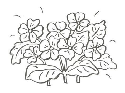 Imagenes para Colorear de Flores Archivos   Dibujos ...