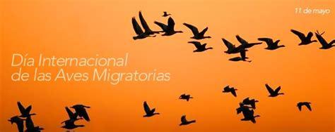 Imágenes para compartir el Día mundial del Ave Migratoria ...