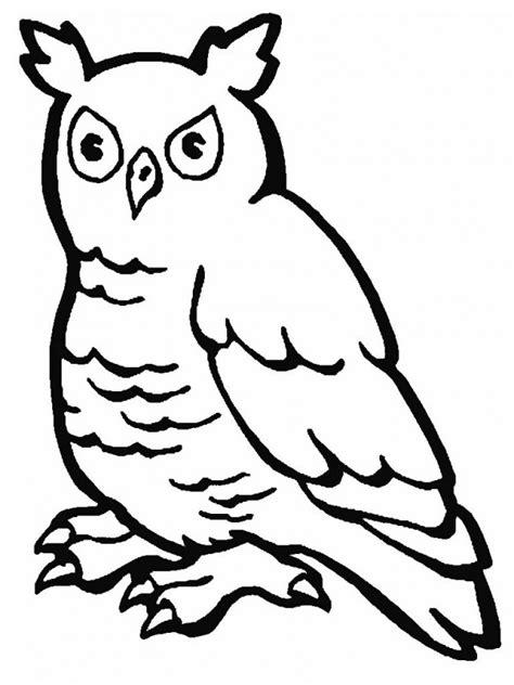 Imágenes para pintar de aves | Colorear imágenes