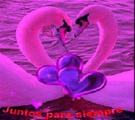 Imagenes Romanticas Con Movimientos Fotos Para ...