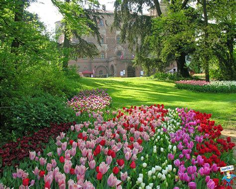 Immagini Primavera • Immagini in alta definizione (HD)