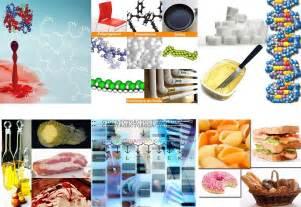 Importancia y objeto de estudio de la Química Orgánica ...