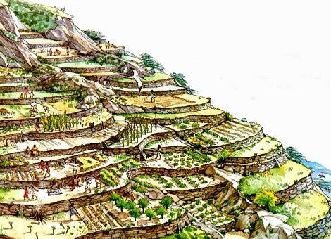 Incas: Economía   SocialHizo