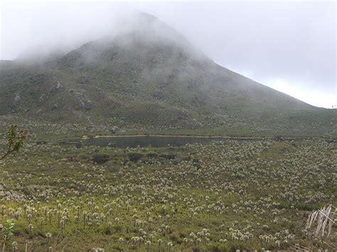 Información - Parque Nacional Natural Chingaza - Bogotá