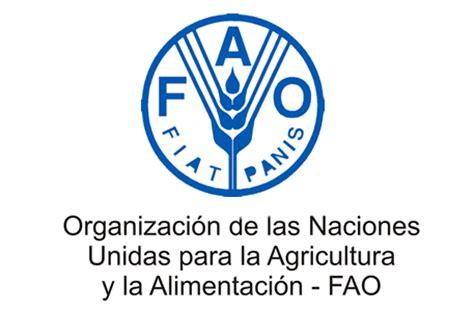 Informe de la FAO omitió información sobre la crisis ...
