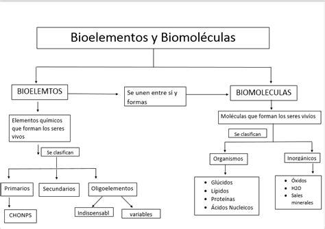 Insatisfacción Corporal: biomoleculas y bioelementos