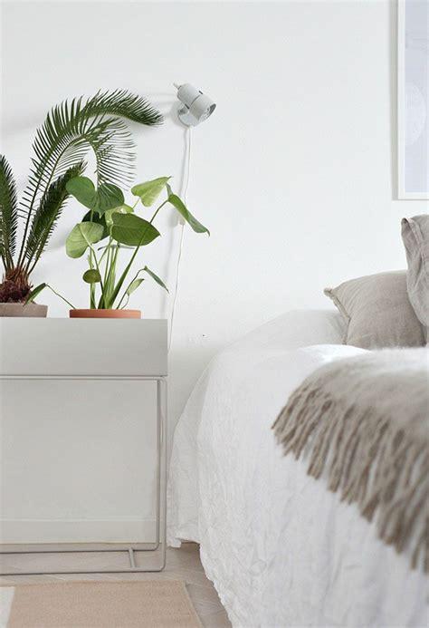 Inspiraciones para decorar con plantas de interior