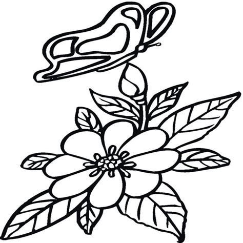 Inspirado Dibujos De Mariposas Para Pintar Y Colorear