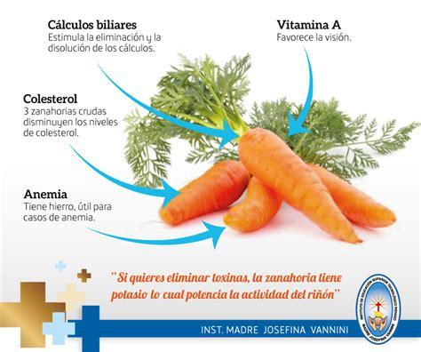 Instituto Vannini: Los Beneficios de la Zanahoria [Infografía]