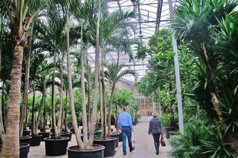 Interior Plantas Proyectos comprar online