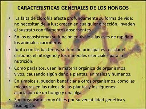INTRODUCCION A LA MICOLOGIA MICROORGANISMOS CLINICAMENTE ...