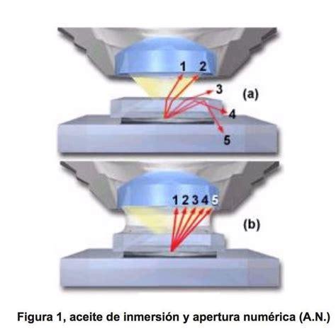 Introducción a la microscopía de inmersión   Parte 1 ...