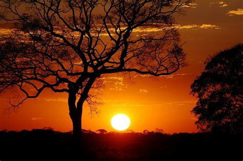 Já fotografou o pôr do sol? Tente! | Savaris – Paixão por ...