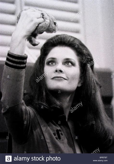 JANE BADLER & RABBIT V: THE FINAL BATTLE (1984 Stock Photo ...