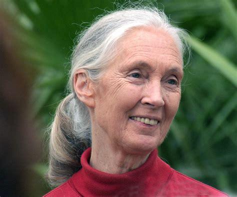 Jane Goodall Biography   Childhood, Life Achievements ...